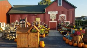 The Fall Farm Train Ride Near Chicago That's Perfect For A Fall Day