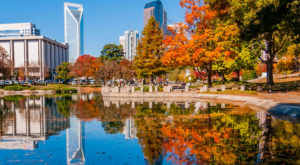 15 Reasons Why My Heart Will Always Be In Charlotte