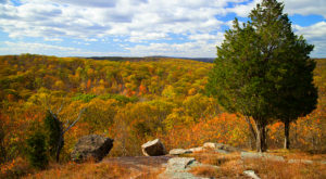 The Breathtaking New Jersey Hike That Glows Gold Once A Year
