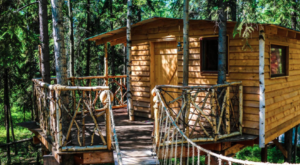 This Enchanting Treehouse In Alaska Looks Like Something Straight Out Of A Dream