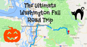 The Ultimate Washington Fall Weekend Road Trip Is Right Here