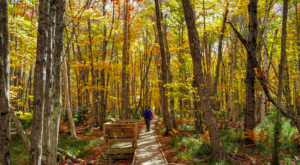 9 Short And Sweet Fall Hikes In Maine With A Spectacular End View