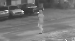 There's A Possible Serial Killer On The Loose In Florida – Here's What We Know