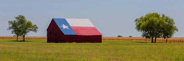 Texas Newsletter