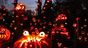 Don't Miss The Most Magical Halloween Event In All Of Rhode Island