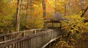 The 10 Most Breathtaking Places To Spend A Fall Afternoon In Alabama