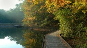 The One Hikeable Lake In Ohio That's Simply Breathtaking In The Fall