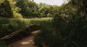 The Hiking Trail Hiding In Indianapolis That Will Transport You To Another World