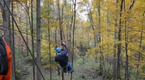 This Canopy Tour In Indiana Is The Perfect Way To See The Fall Colors Like Never Before