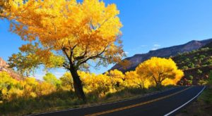 12 Picture Perfect Fall Day Trips To Take In New Mexico