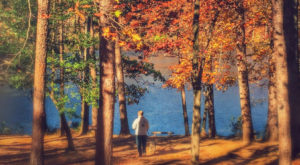 The One Hikeable Lake In South Carolina That's Simply Breathtaking In The Fall
