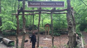 The Little Known DC Nature Center That Will Bring Out The Explorer In You