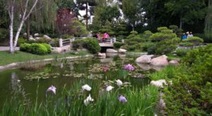 There's A Little Known Unique Japanese Garden In State And It's Truly Serene