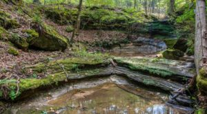 The 10 Secret Parks Of Missouri You've Never Heard Of But Need To Visit