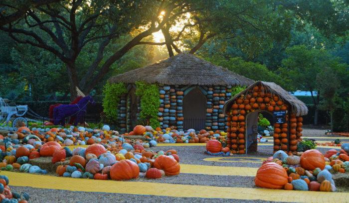 15 best harvest festivals around dallas forth wroth 2017 - Dallas home and garden show 2017 ...