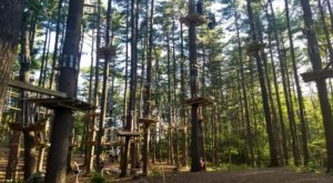 There's An Adventure Park Hiding Near Boston And You Need To Visit