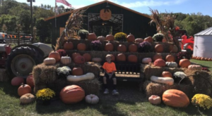 This Unusual Pumpkin Patch In Missouri Will Lead You Straight Into A Cliffside Cave
