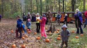 Take These Pumpkin-Themed Train Rides In Wisconsin For An Unforgettable Fall Season