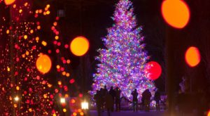 The Magical Pennsylvania Garden That Comes Alive With Light Each Winter