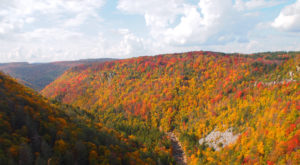 This Grand Mountain Drive Will Lead You To The Best Views in West Virginia