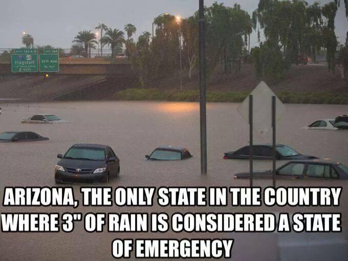 Funny Meme Facebook : 11 funny arizona memes