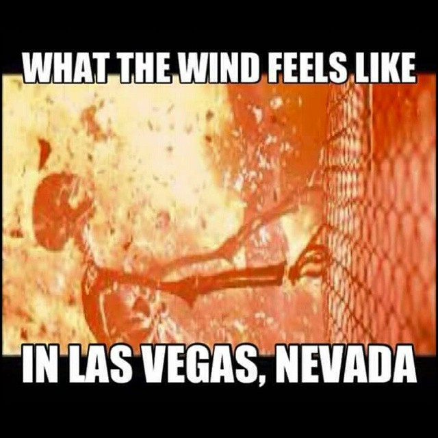 11325043_1559328200989984_1491583606_n 11 funny memes you'll only get if you're from nevada