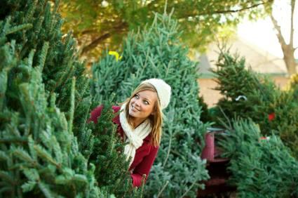 Holly Acres Nursery And Garden Center Facebook
