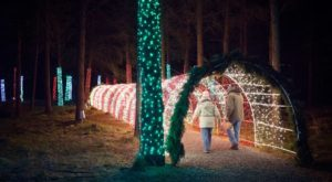 The Winter Walk In Oregon That Will Positively Enchant You