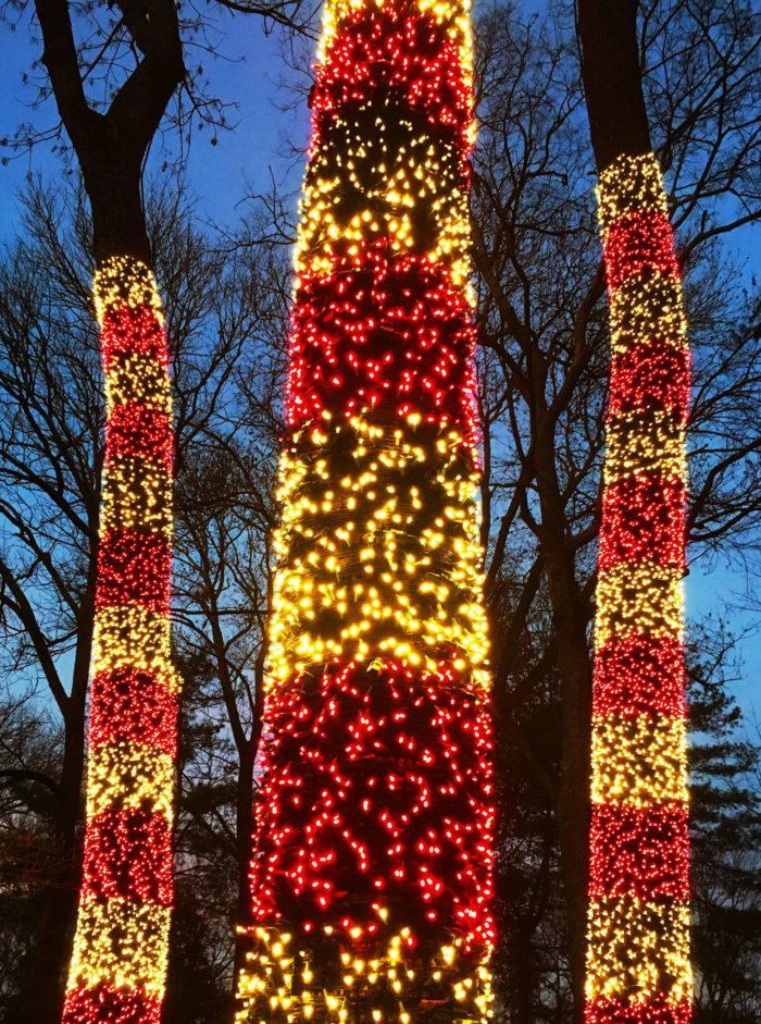 Christmas Lights Show Kits