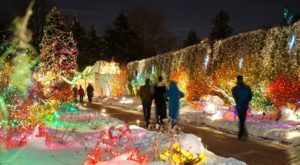 The Winter Walk In Denver That Will Positively Enchant You