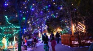The Mesmerizing Christmas Display In Colorado With Over 50 Acres Of Glittering Lights
