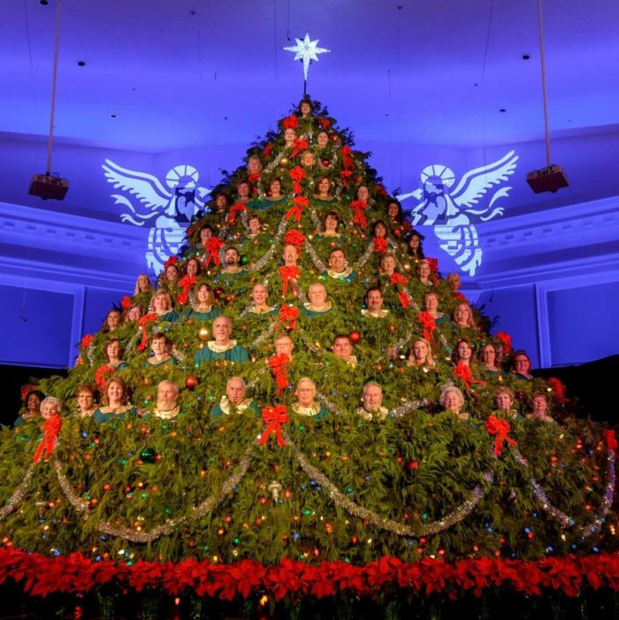 Facebook/Singing Christmas Tree of First Baptist Church, Georgetown, SC - The Singing Christmas Tree In South Carolina You Need To See To Believe