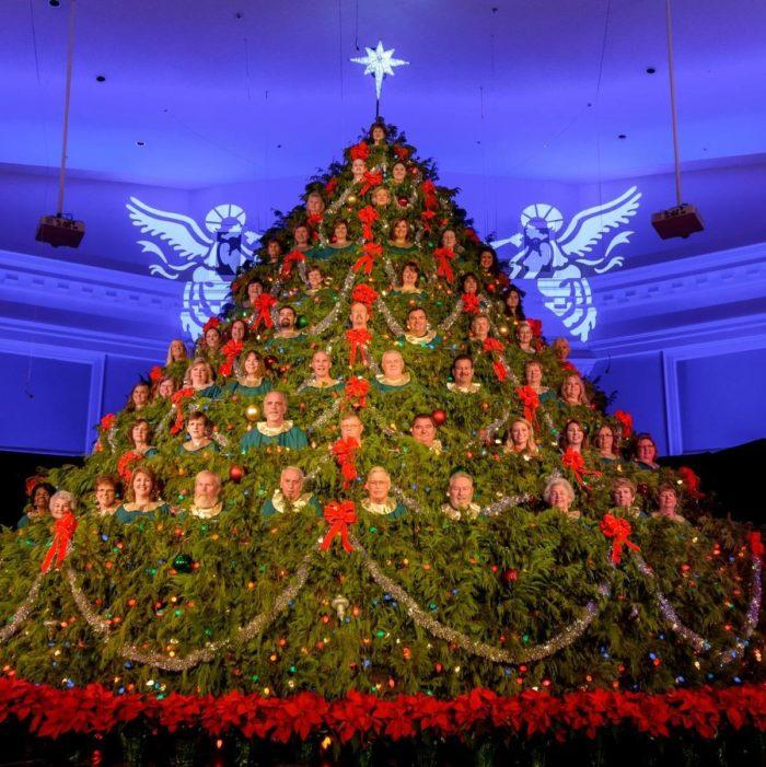 christmas trees singing tree - photo #34