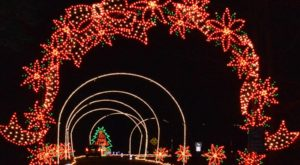 The Mesmerizing Christmas Display In Virginia With Over 1 Million Glittering Lights