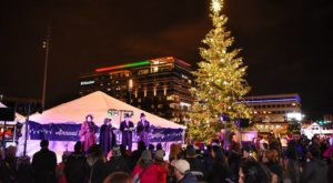 You Won't Want To Miss This Breathtaking Tree Lighting Celebration Happening In Buffalo
