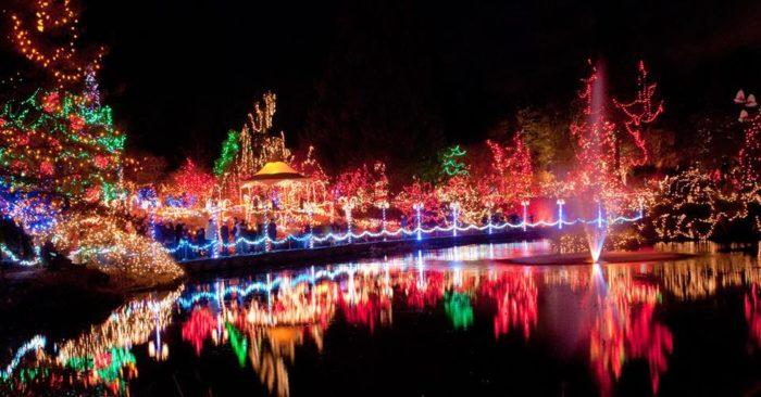Indoor Led Christmas Lights