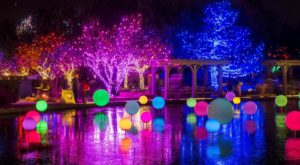 9 Magical Light Displays In Denver That Will Simply Mesmerize You This Season