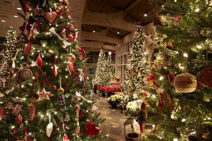 Frederik Meijer Gardens Hosts Most Beautiful Holiday