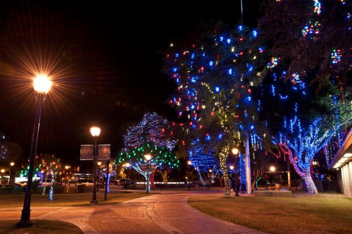 Christmas Lights Stores
