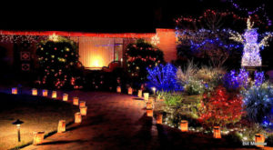 The Winter Walk In Arizona That Will Positively Enchant You