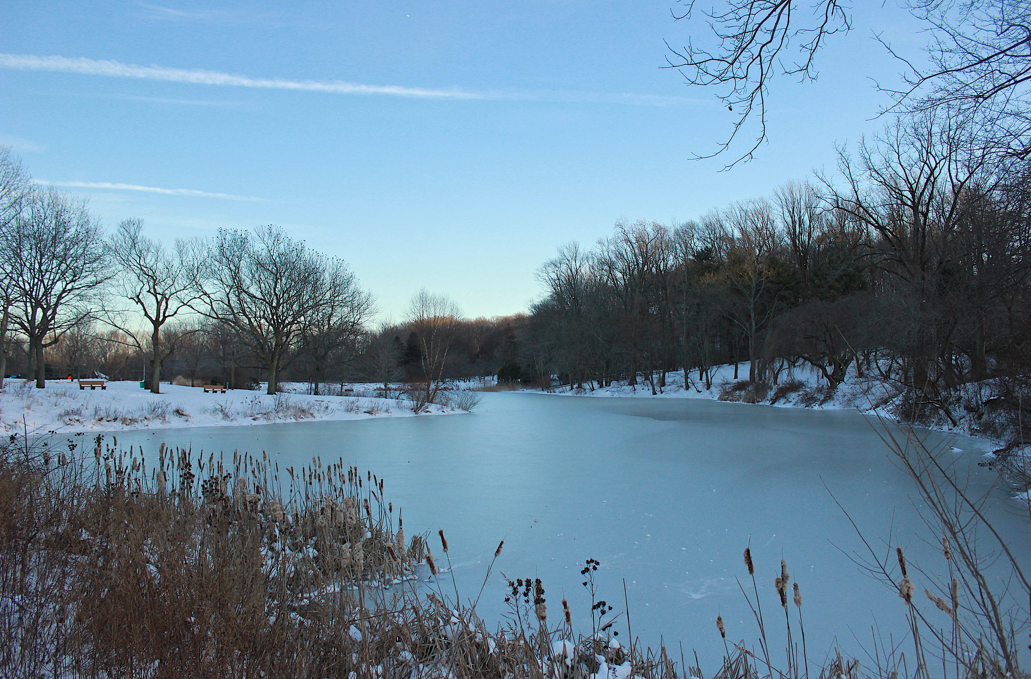 The Amazing Natural Ice Skating Rink At Holmdel Park In