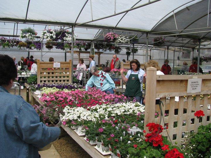 Kalamazoo indoor gardening hours garden ftempo for Indoor gardening kalamazoo