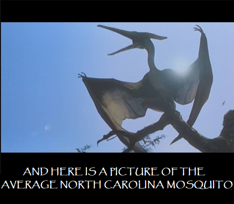 19598735_501956983479500_3576033126235126852_n 11 hilarious and relatable memes about north carolina