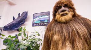 10  Attractions That Prove Maine Might Be The Weirdest Place In America