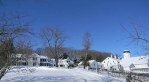 The Charming Farm That's So Worth The Journey From Cleveland This Winter