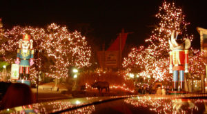 The Magical Ohio Garden That Comes Alive With Light Each Winter