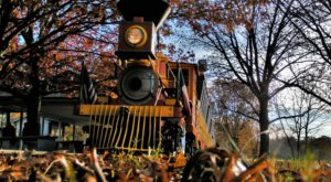 The Forest Park Train Ride In Fort Worth That's Perfect For A Fall Day