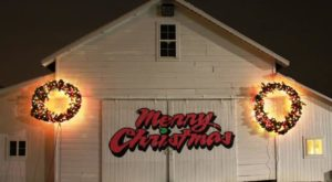 This Christmas Farm In Ohio Will Positively Enchant You This Season