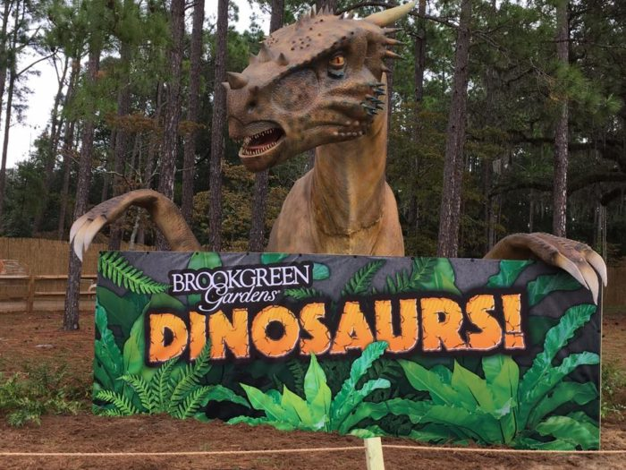 Seventeen Dinosaurs Are In The Outdoor Display That Opened At The End Of  October At Brookgreen Gardens. You May Be Shocked By How Realistic They  Seem.