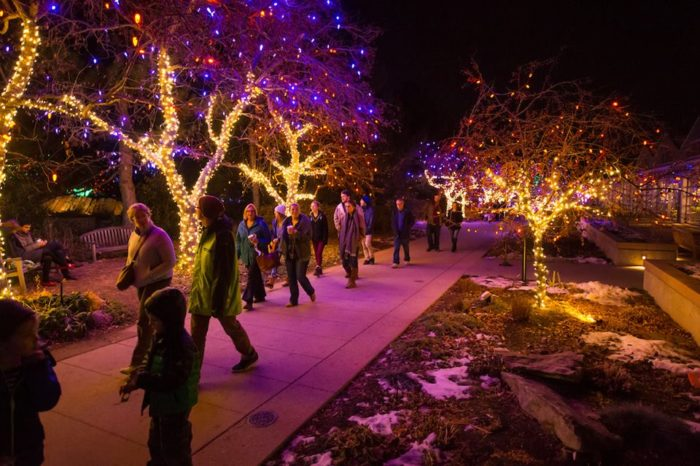 ...when The Grounds Transform Into The Extravagant Blossoms Of Light! Denver  Botanic Gardens Facebook